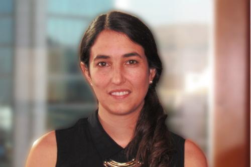 María Elisa Illanes S.